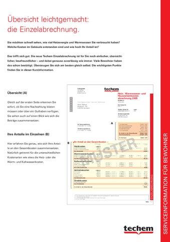 techem infoblatt einzelabrechnung by techem gmbh issuu. Black Bedroom Furniture Sets. Home Design Ideas
