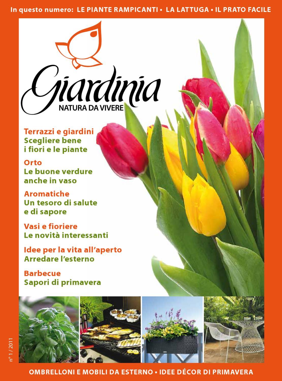 Piante Rampicanti Da Esterno giardinia primavera 2011 by alberto panieri - issuu