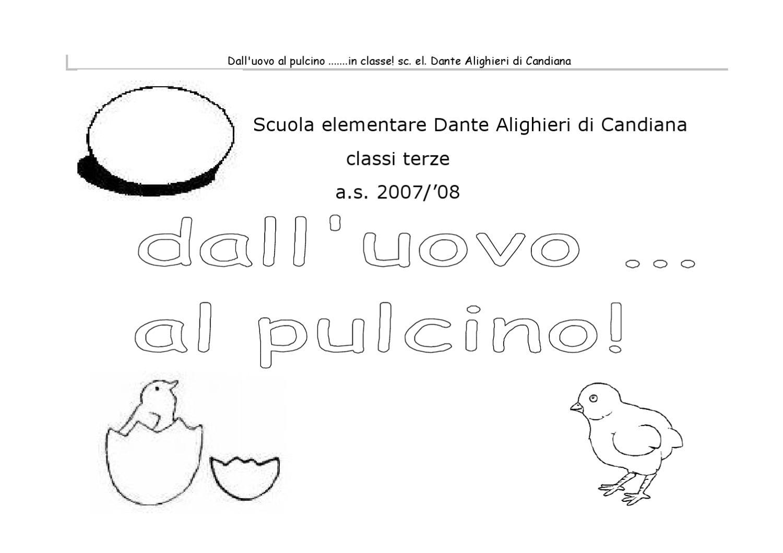 Fascicolo Pulcino By Scuolaprimaria Candiana Issuu