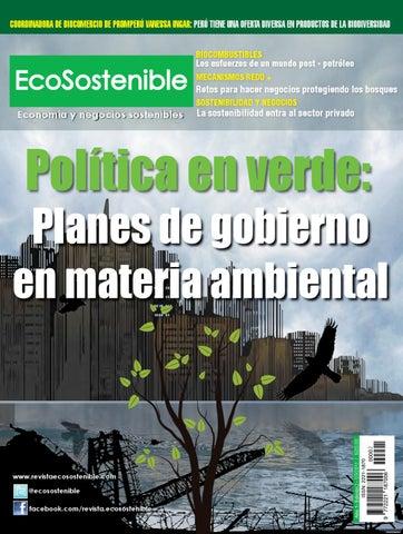 4d7580e04c2 Revista EcoSostenible N° II by Grupo Ecosostenible SAC - issuu
