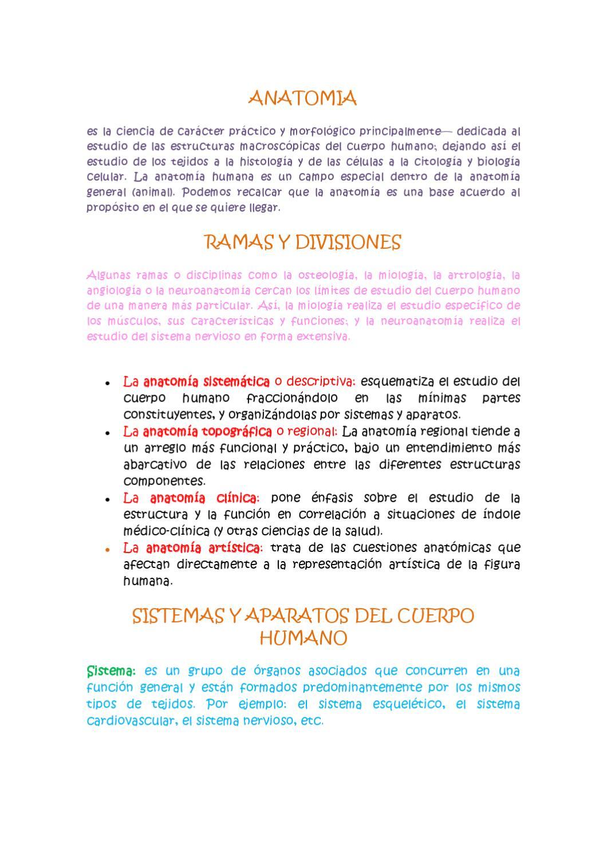 Anatomia y Articulaciones by Veronica Cadena - issuu