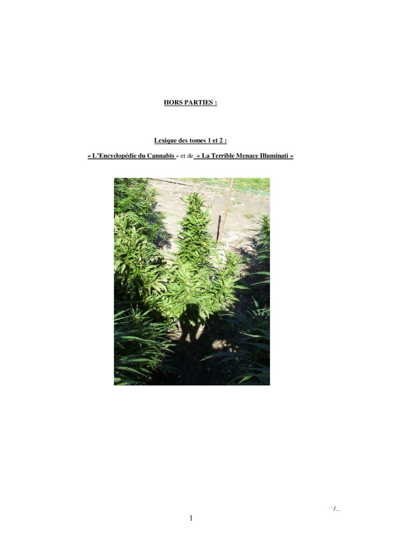 1x Solaire DEL Jardin Lanterne enfant personnage Fille Fleurs Elfe sépulture 550
