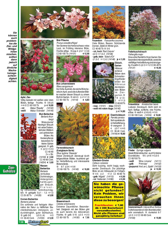 Natur Und Garten Ausgabe 65 By Naturagart Issuu