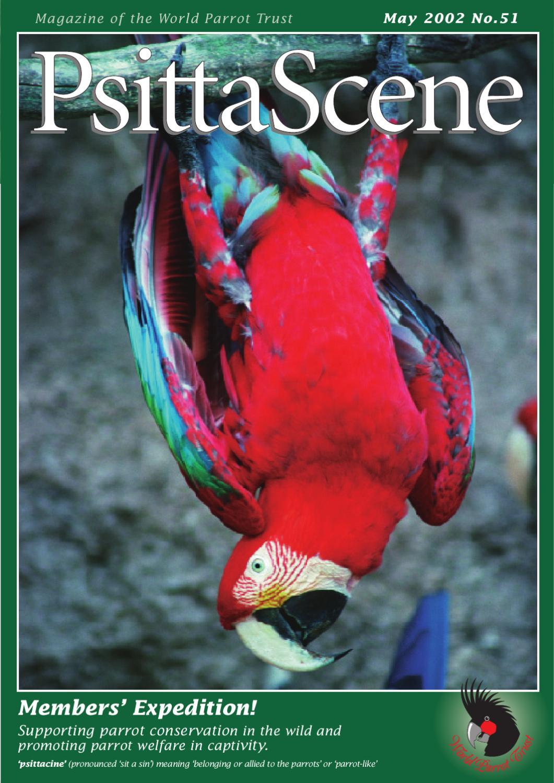 PsittaScene May 2002 by World Parrot Trust - issuu