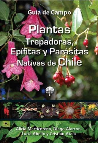 b0e6b09f4e54 Esta es una publicaci贸n de la Corporaci贸n Chilena de la Madera (CORMA) que  cuenta con el patrocinio de las siguientes Empresas Forestales