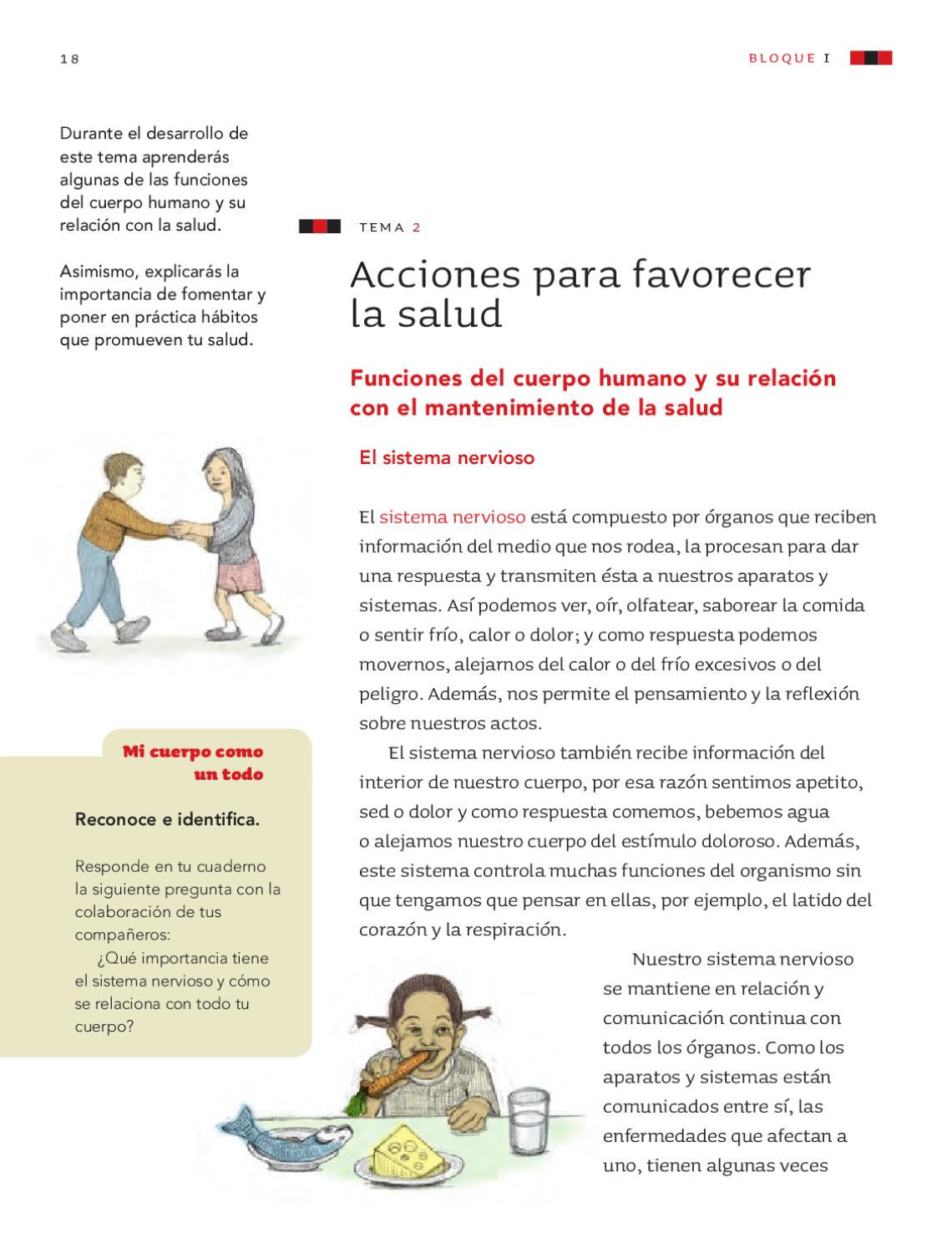 Ciencias Naturales 4to. Grado by Rarámuri - issuu