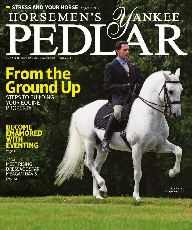 JINN STIRRUPS HORSE RIDING LIGHT /& DURABLE ALUMINIUM WITH 44 CRYSTALS AMIDALE