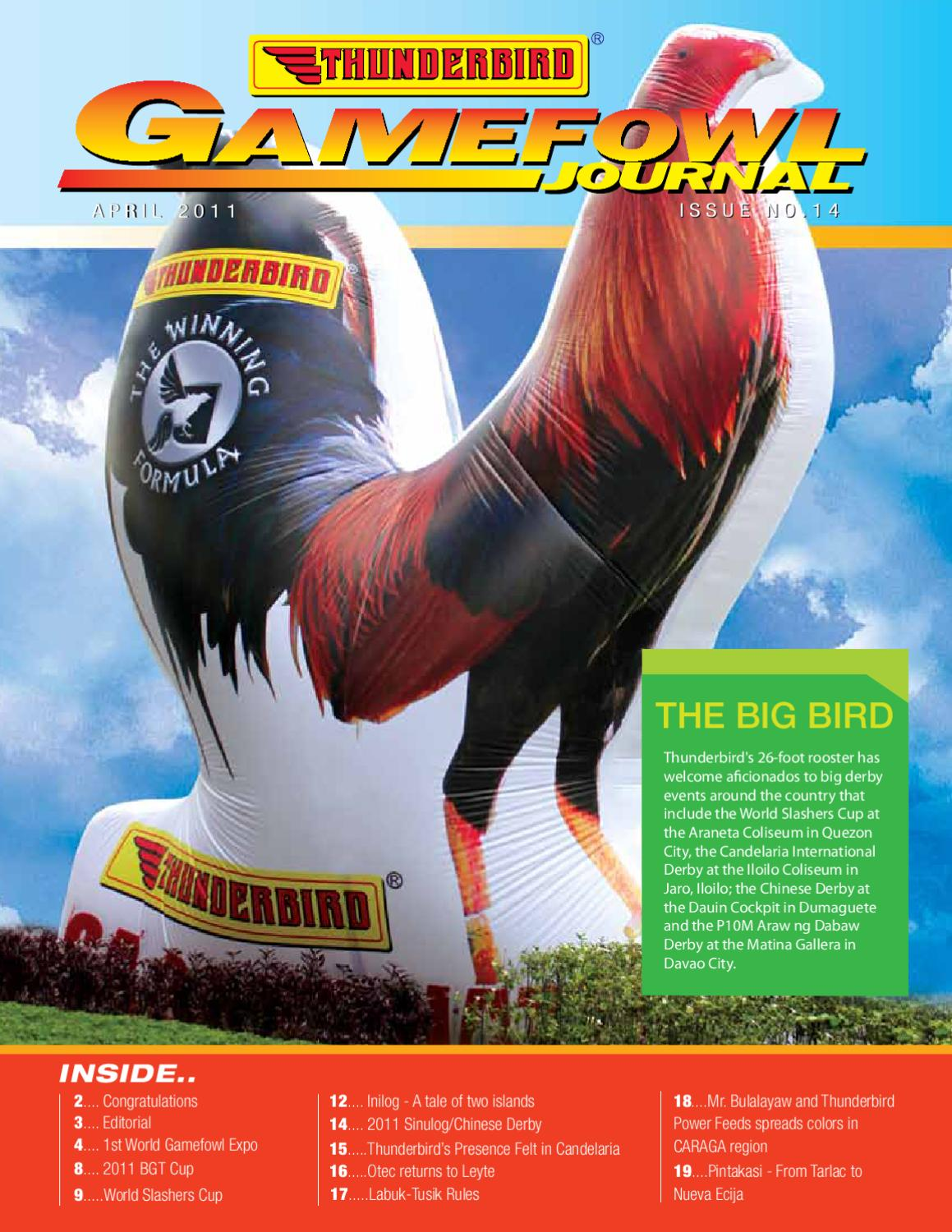 Gamefoul_Thunderbird's Newsletter by Marcelo Jr Narisma - issuu