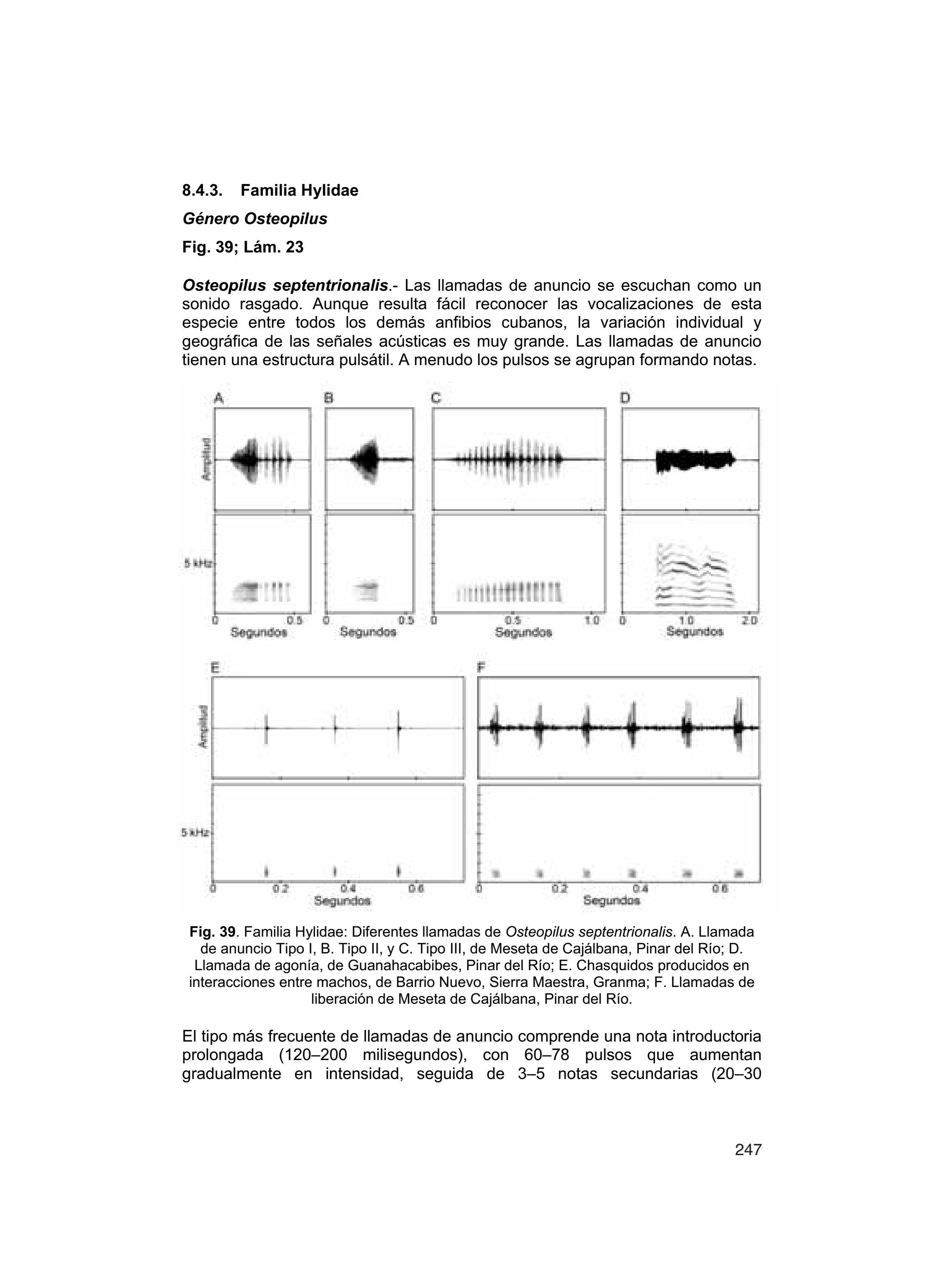 Diaz Lm Cadiz A 2006 Guia Taxonomica De Los Anfibios