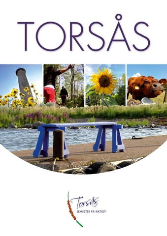 Torss 2012 by Torss kommun - issuu
