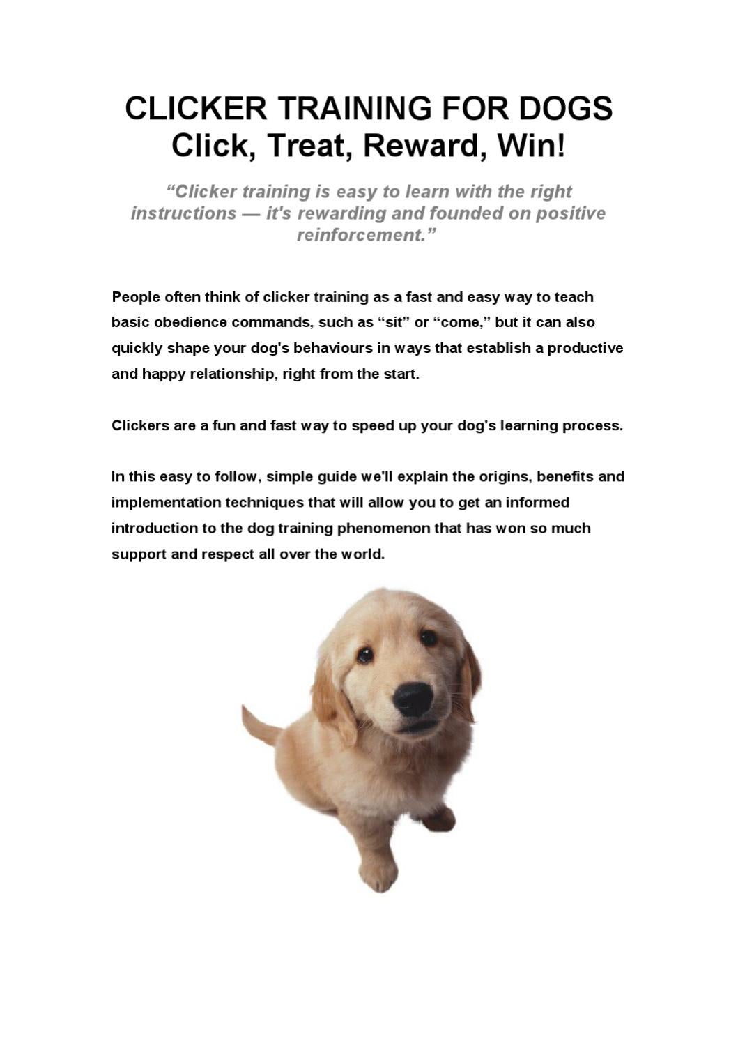 Clicker Training Your Dog by Charles Vincent - issuu