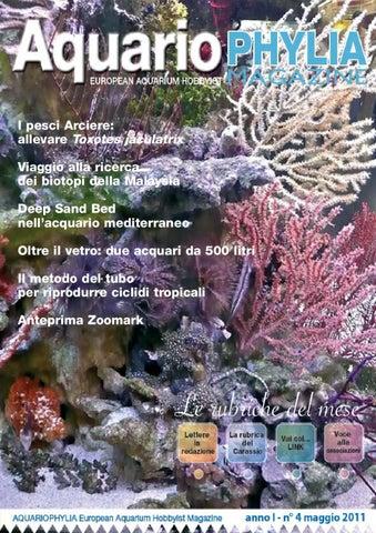 Aquariophylia 2 2012 febbraio by valerio zupo issuu aquariophylia 4 maggio 2011 fandeluxe Gallery