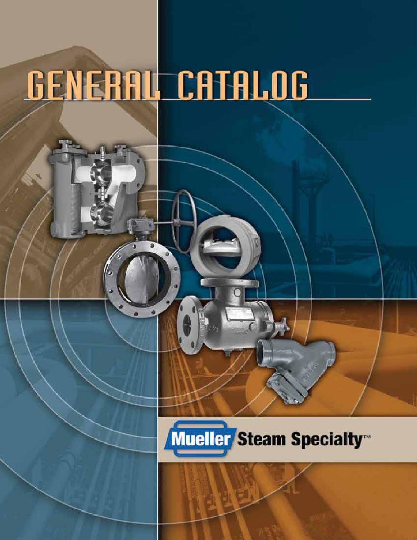 MUELLER STEAM SPECIALTY 3 758 N Iron Body Y Strainer,304