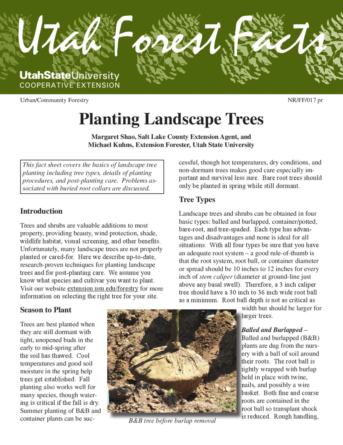 How to Plant a Tree by Utah State University Extension - issuu