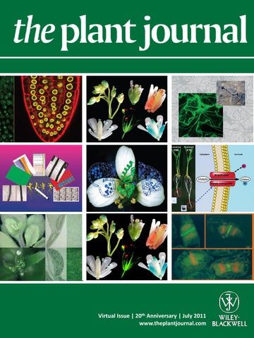 Celebrating 20 Years of The Plant Journal