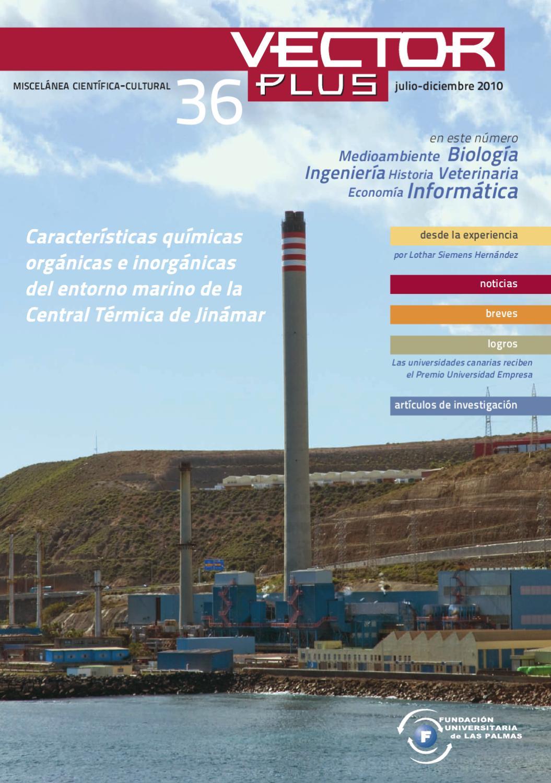 Vector Plus 36 by Fundación Canaria Universitaria de Las