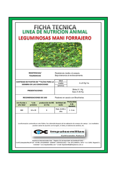 Ficha tecnica mani forrajero by david herrera issuu for Ficha tecnica silestone