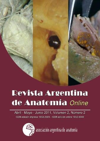 Revista Argentina de Anatomia Online 2011; 2(2): 35-70. by Nicolas ...