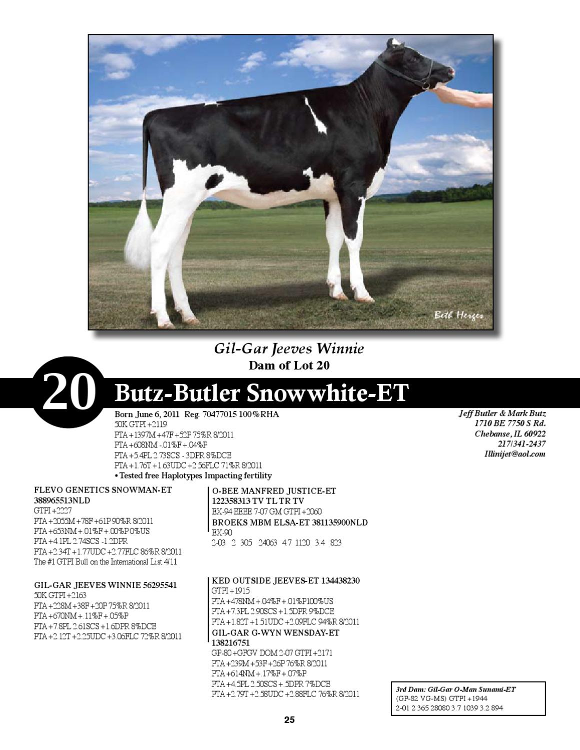 Breeders Impact sale by Dairy Agenda Today - issuu