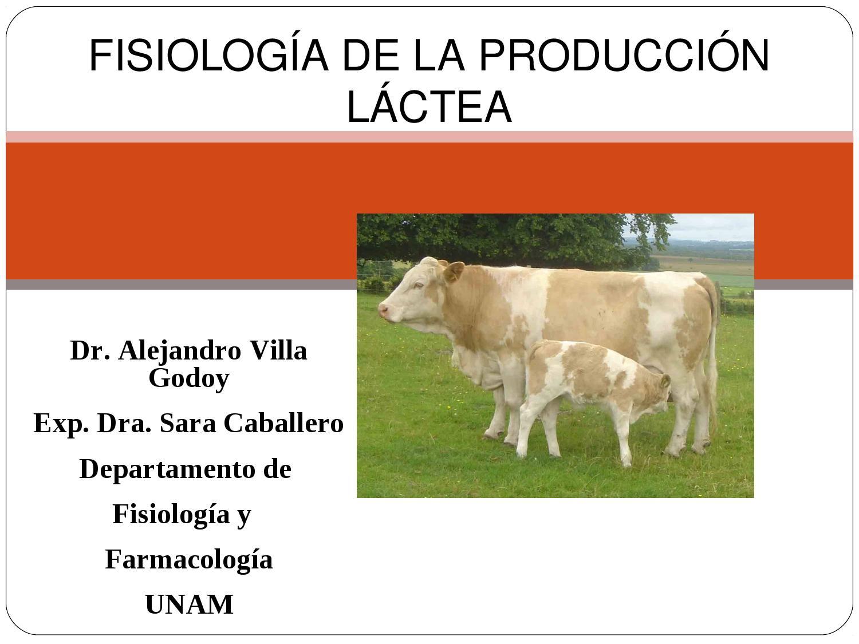 Fisiología de la Producción de leche by Luis Balarezo - issuu