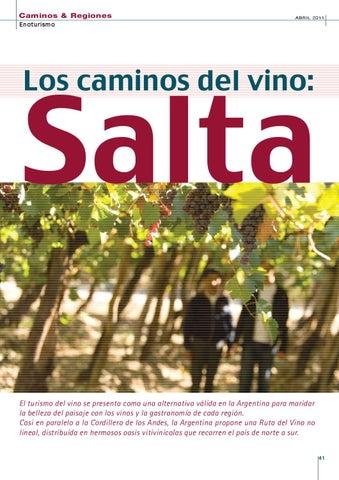 Page 41 of LOS CAMINOS DEL VINO: SALTA.
