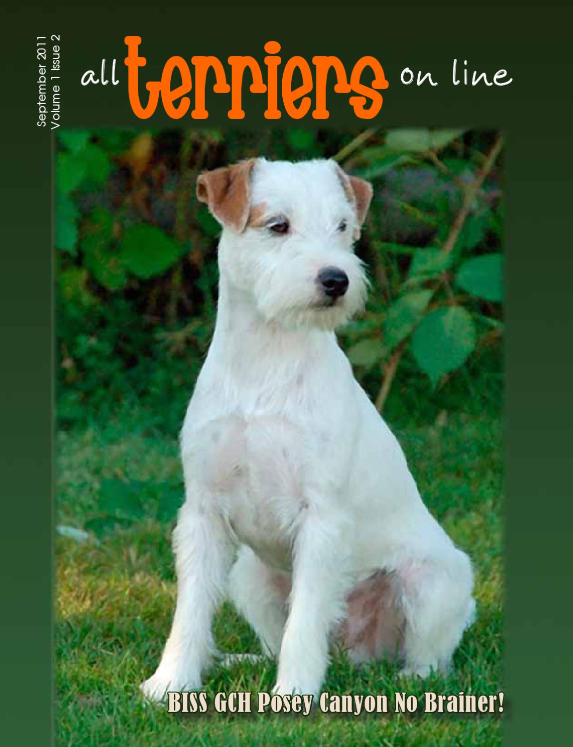 All Terriers On Line Sept. 2011 by McGuire Magazines - issuu