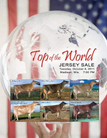 Top of the World Catalog by AJCA/NAJ/JMS - issuu