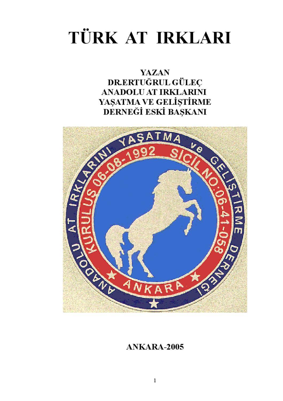Fotoğraf ve isimleri olan atların en yaygın takımları
