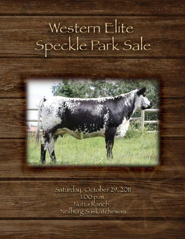 Western Elite Speckle Park Sale By Today S Publishing Inc