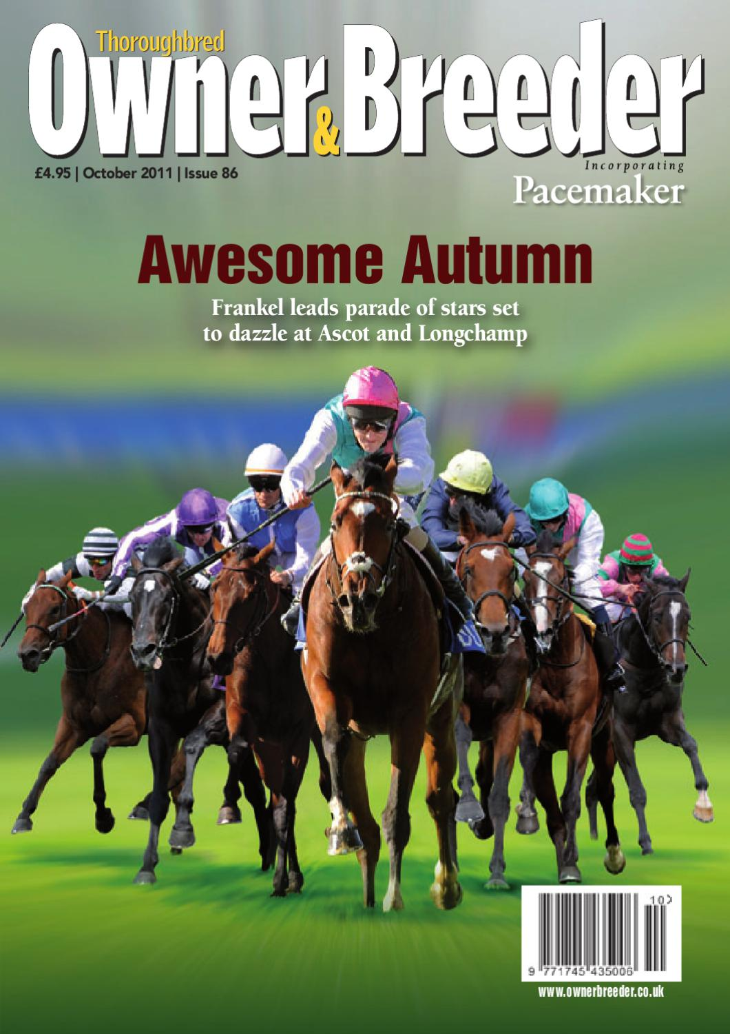 Thoroughbred Owner & Breeder by Racehorse Owners Association - issuu