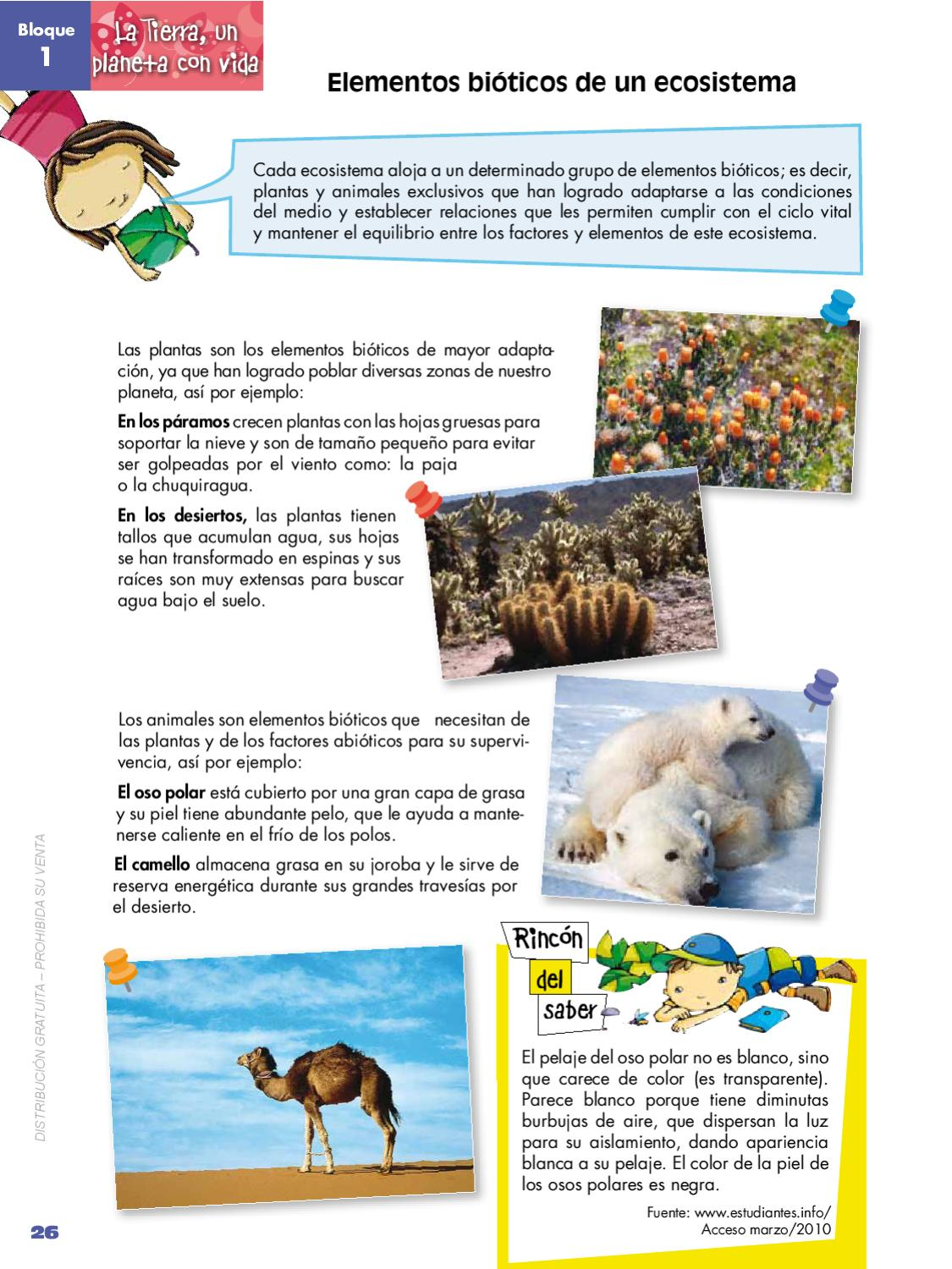 Naturales_5 by quito ecuador - issuu