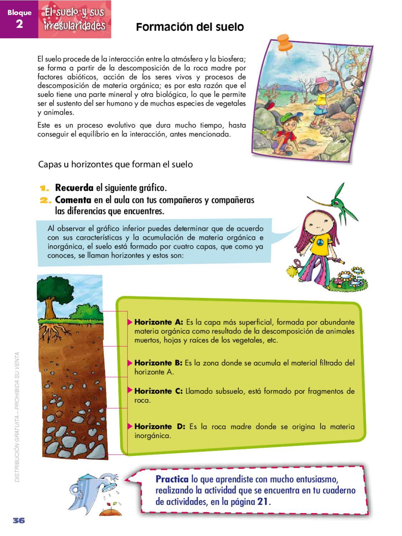 Naturales 5 by quito ecuador issuu for Proceso de formacion del suelo