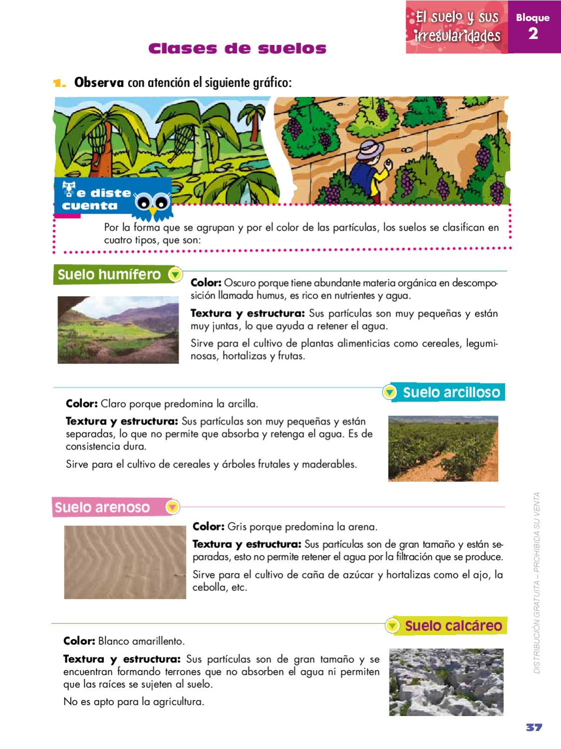 Naturales 5 by quito ecuador issuu for Suelos y tipos de suelos