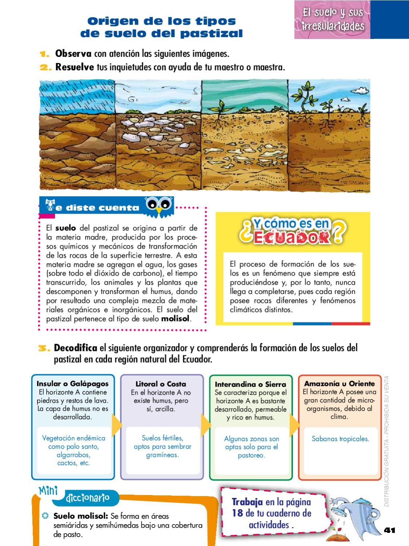 Naturales 6 by quito ecuador issuu for El suelo y sus capas