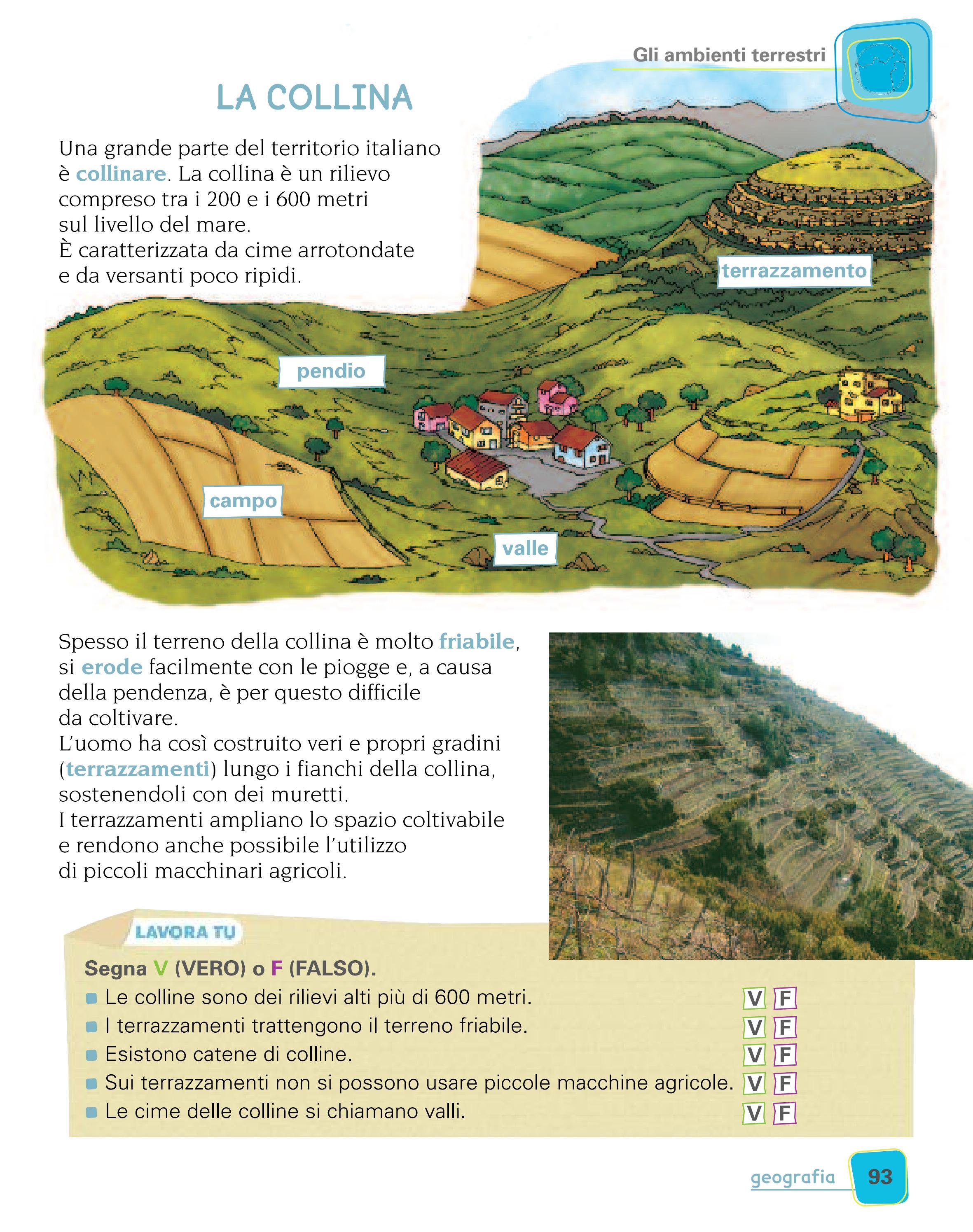 magicamente insieme 3 - storia geografia by ELI Publishing - issuu