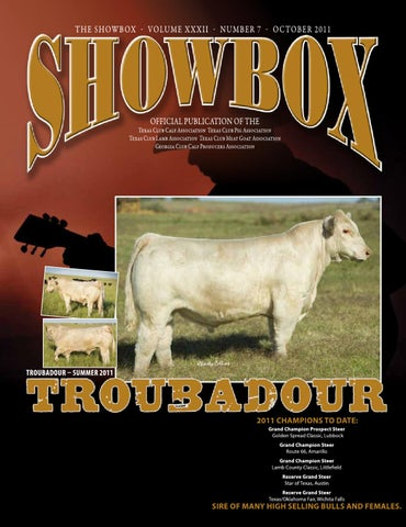 cattle show box