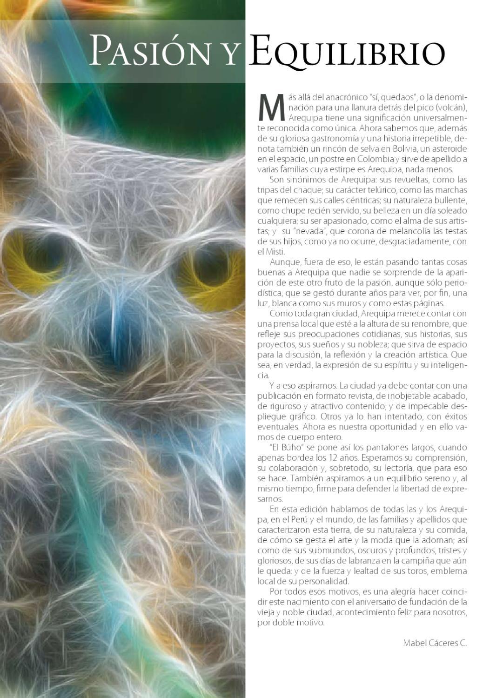 Revista Nº 1 - El Buho by El Búho - issuu