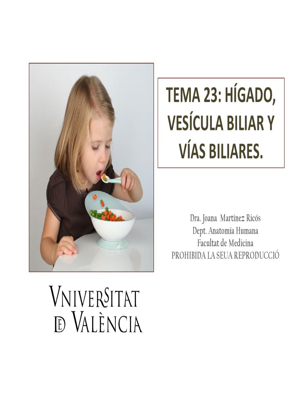 higado by Lucía Martínez - issuu
