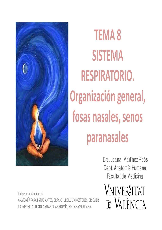 Aparato respiratorio by Navarro Conejero - issuu