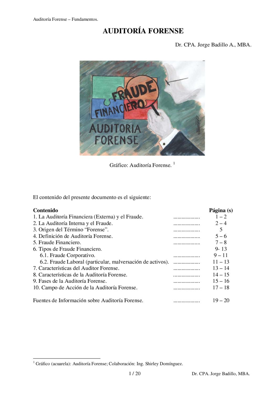 Auditoria Forense By Willy Arroyo Issuu