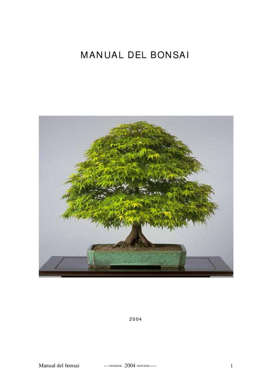 Manual Del Bonsai Iii By Harold Montesinos Issuu