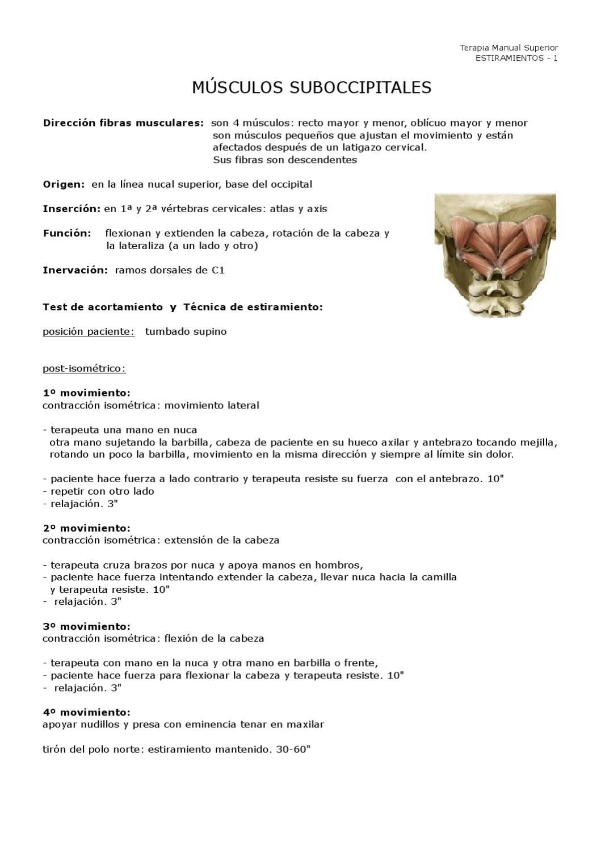 Estiramientos Tren Superior by Antonio Castillo - issuu