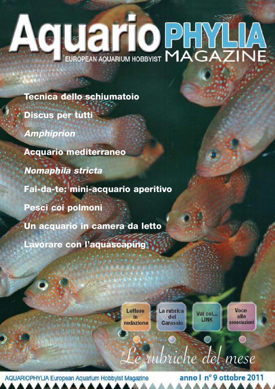 page 245 : sfondo esterno per acquario fai da te. box piu ... - Sfondo Esterno Per Acquario Fai Da Te