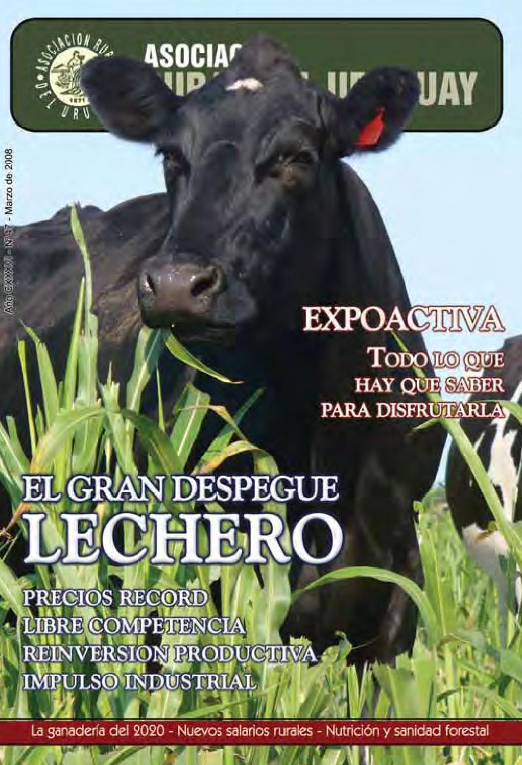 Revista ARU - Marzo 2008 by Duplex Comunicación - issuu