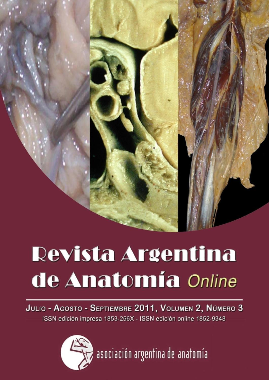 Revista Argentina de Anatomía Online 2011; 2(3): 71-100. by Nicolas ...
