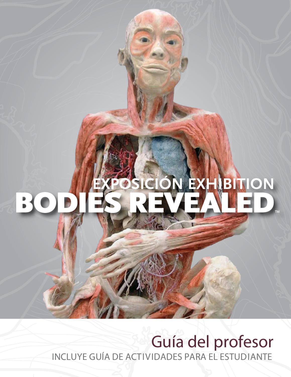 the bodies by MJosé Andreu Peco - issuu