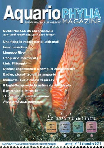 Aquariophylia 2 2012 febbraio by valerio zupo issuu aquariophylia 11 dicembre 2011 fandeluxe Gallery