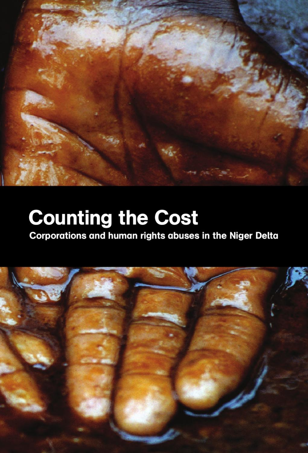 Counting the Cost: corporations and human rights abuses in the Niger