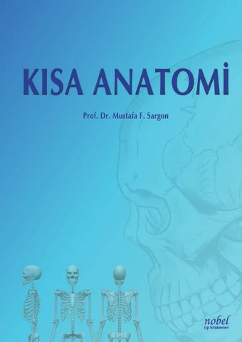 Kisa Anatomi By Nobel Tip Kitabevi Ltd Issuu Eklem yüzleri arasında hiyalin kıkırdak bulunur. kisa anatomi by nobel tip kitabevi ltd