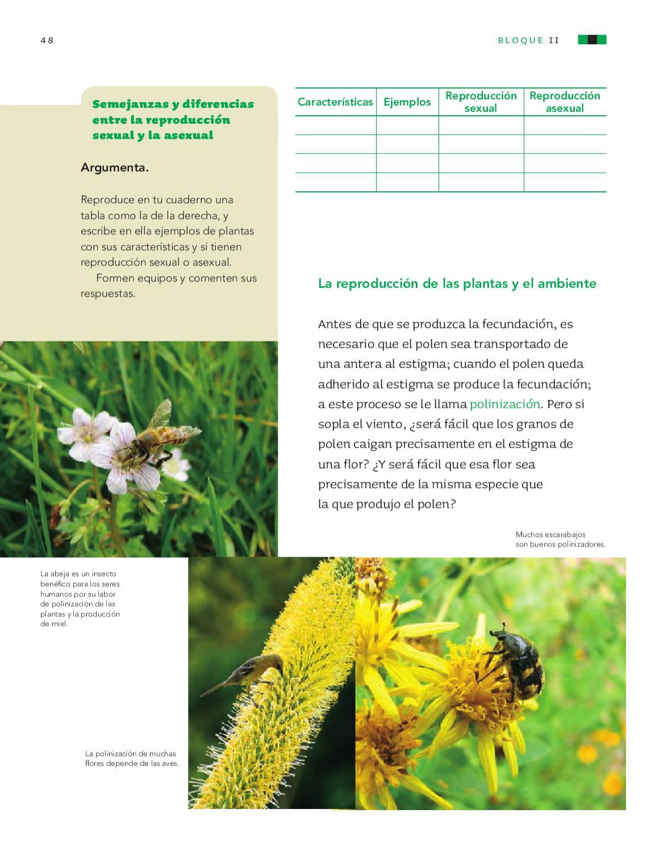 Ejemplos de plantas de reproduccion asexual y sus caracteristicas